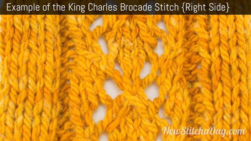 Example of the King Charles Brocade Stitch. (Right Side)
