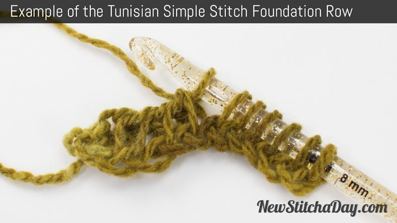 How to Crochet the Tunisian Simple Stitch Foundation Row.